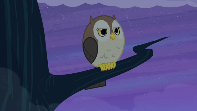 File:Owl with stern expression S4E07.png