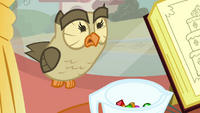 Owlowiscious scared S3E11.png