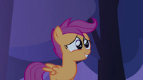 Scootaloo 'aren't that many trees around here!' S3E06
