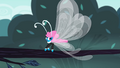 Seabreeze on a tree branch S4E16.png