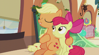 "Applejack ""the warmth shared on that fateful night"" S5E20"