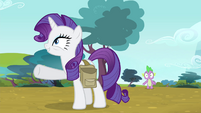 "Rarity ""I'm thinking we go by chariot"" S4E23"