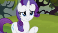 Rarity we'll all ready S3E9.png