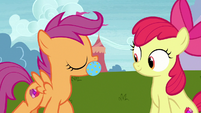 Scootaloo brings toy ball to Apple Bloom S7E6
