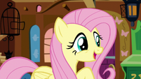 "Fluttershy ""I really need to rest up"" S5E3"