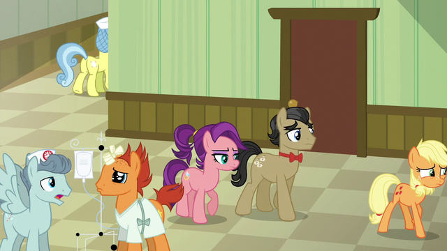 File:Applejack leads Filthy and Spoiled to Granny's room S6E23.png