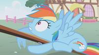 "Rainbow Dash ""Wait!"" S01E04"