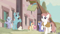 Other village ponies watching the Mane Six S5E1