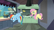 Rainbow and Fluttershy behind the burger stand S4E22.png