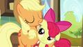 Applejack hugs Apple Bloom S5E17.png