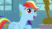 "Rainbow Dash ""I like to tell it like it is"" S6E7"