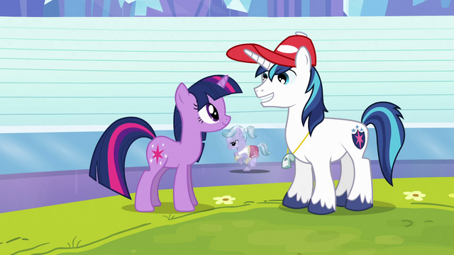 File:Twilight and Shining Armor on racetrack S3E12.png