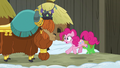 Pinkie Pie feels the earth still shaking S7E11.png