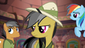 Daring Do glares at Quibble Pants S6E13.png