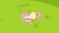 Fluttershy on the ground S2E22.png
