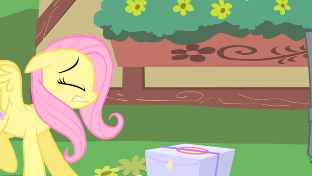 File:Fluttershy bumps into Pinkie Pie S1E25.png