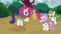 Rarity remorsefully approaches Sweetie Belle S7E6.png