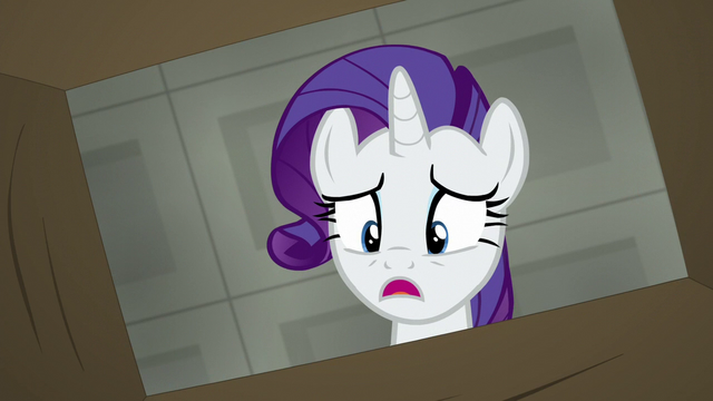 File:Rarity looking in one of the boxes S6E9.png