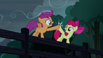 Apple Bloom and Scootaloo hoof-bump S5E6