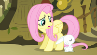 Fluttershy 'to sing on stage in front of everypony' S4E14