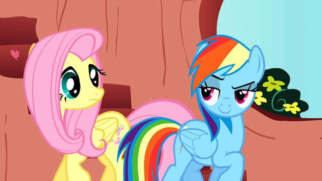 File:Rainbow Dash is confident about her spectacular performance S01E16.png