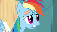 Worried Rainbow Dash S02E16