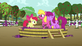 Apple Bloom and ponies stomping on a tub of grapes S6E4.png