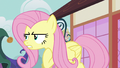"Fluttershy ""I got this, girls"" S7E14.png"