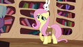 Fluttershy talking while feeling worried S3E11.png