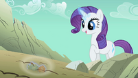 Rarity gems found S01E19