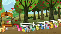 Waiting in line for cider 1 S2E15