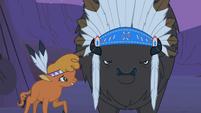Chief Thunderhooves Face2 S1E21