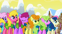 Ponies listening to Mayor Mare S1E11