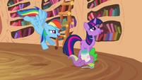 Rainbow, Twilight and Spike S2E20