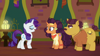 Rarity offers to help Coriander and Saffron S6E12