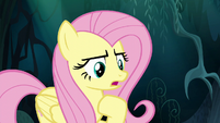 "Fluttershy ""you can come back with me"" S6E11"