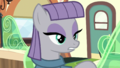 "Maud Pie ""Slow down, Pinkie"" S7E4.png"