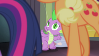 Spike watches ponies walk away S4E06