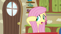 "Fluttershy ""I'm just surprised"" S6E11.png"
