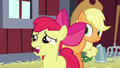 "AB ""you'll have to miss the Sisterhooves Social!"" S5E17.png"