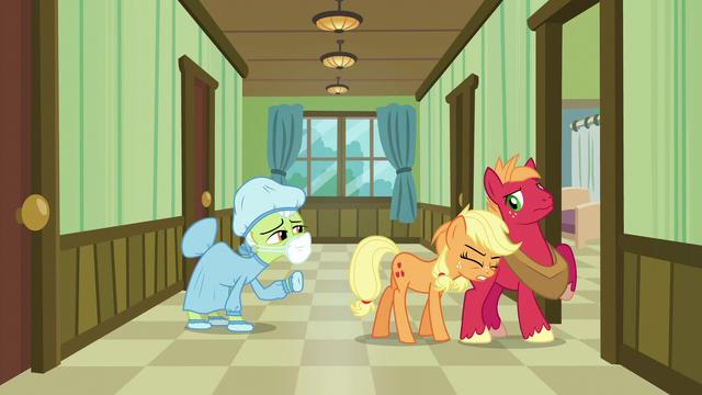 File:Applejack pushing Big Mac into a hospital room S6E23.png