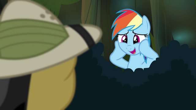 "File:Rainbow Dash ""I am suuuuuch"" S4E04.png"