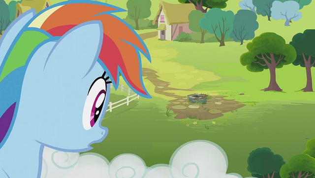 File:Rainbow Dash looking at the well S2E08.png