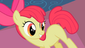 Apple Bloom looks at her flank S2E06.png
