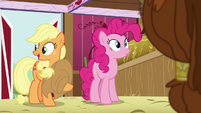 "Applejack ""in the barn during your visit"" S5E11"