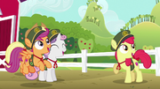 Cutie Mark Crusaders excited for cookie drive S6E15
