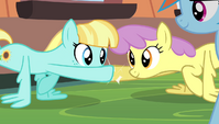 Helia and Parasol hoof-bump while doing wing-ups S4E24