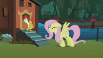 Fluttershy scaring the chickens S01E17