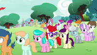 Foals lined up at the Ponyville Schoolhouse S7E14