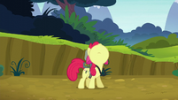 Apple Bloom looks up at the twittermites S5E04